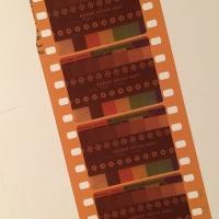 35mm negative