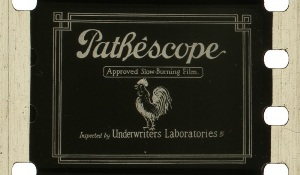 28mm-Pathescope_300